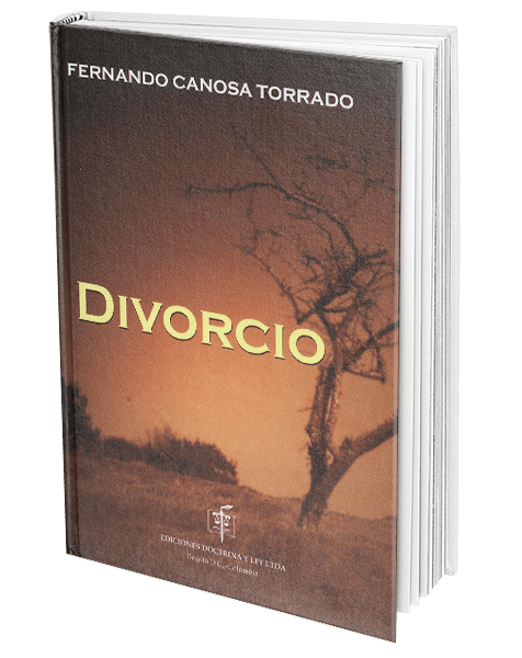 El Matrimonio Catolico Tiene Efectos Civiles En Colombia : Divorcio de matrimonio civil y cesación los efectos