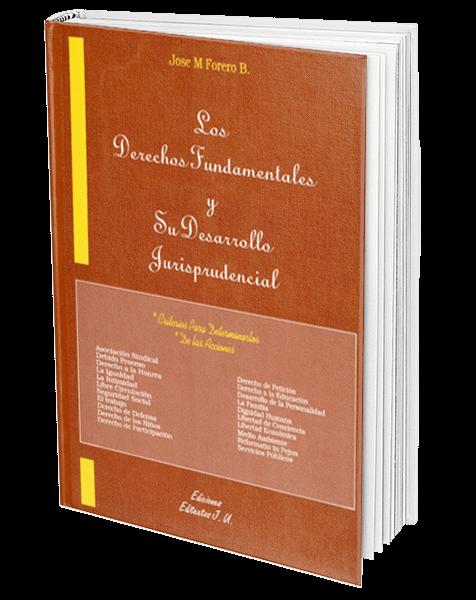 los-derechos-fundamentales-y-su-desarrollo-jurisprudencial5